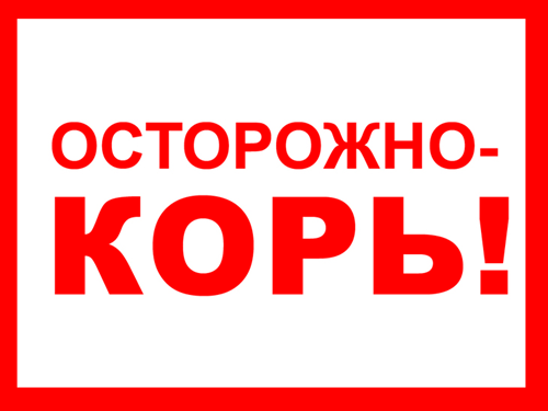 Sip_pri_kori_simptomi-_osobennosti-_lechenie_4