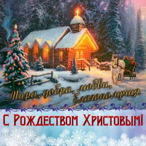 s-rozhdestvo0019
